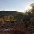 Ridgetop Bushcamp Sonnenaufgang