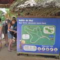 Vallée de Mai