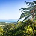 Daintree National Park - Alexandra Lookout (Sicht zur Daintree River Mündung)