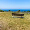 Coastal Cliff Walk - Rodney Reserve, Dover Heights