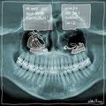 Radiologie & Berufswunsch