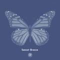AmPm - Sunset Breeze feat. Vlada Vesna [Single] Mastering
