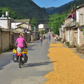 Auf der Strasse wird Mais getrocknet.