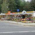 Viele bunte Blumen aus Plastik auf dem Grab, in Polen sehr wichtig.