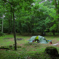 Lauschiger Zeltplatz auf einer Waldlichtung - ein echter Glücksfall.
