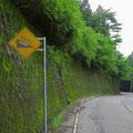 Bei dem Gefälle werden die Felgen beim Bremsen ganz schön heiss. Zum Glück müssen wir nicht bergwärts fahren.