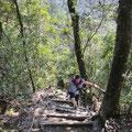 Viele Treppen auf dem ersten Teil zum Gipfel.