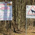 Ja, es gibt Wölfe in der Gegend. Wir zelten erst nächste Woche . . .