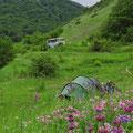 Nach langem Suchen doch noch einen sehr schönen Zeltplatz gefunden.