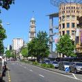 Viel Grün in den Strassen von Auckland.