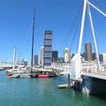 Segeln hat einen hohen Stellenwert in Neuseeland. Wir erinnern uns an den Americas Cup und Alinghi.