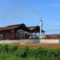 Palmöl-Raffinerie