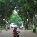 Im Hyde Park.