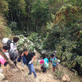 Morgens um halb sechs Uhr ist der stündige, sehr steile Auftieg nach Machu Piccu angenehmer als in der Mittagshitze.