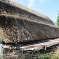 Hier wird ein Schilfdach neu gedeckt.