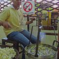 Aus dem äusseren Teil des Cocons wird die Rohseide gewonnen.