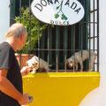 Fritz als Hundeflüsterer. Bis jetzt gab es auf der Tour noch keine Probleme mit Hunden.