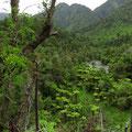 Die Natur entlang dem Wilderness Trail ist eine Wucht.