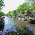 Amsterdam, eine quirlige und doch gemütliche Stadt.