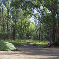 Unser Waldzeltplatz bei dem Wollombi Wasserfällen.