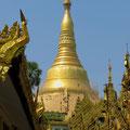 Die berühmte Schwedagon-Pagode in Yangon. Acht Dollar Eintritt pro Nase (nur Ausländer zahlen) sind uns zuviel.