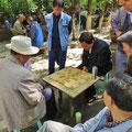 Neben Essen eine sehr beliebte Beschäftigung der Chinesen: Brett- und Kartenspiele.