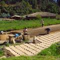 Dachziegelproduktion, komplett von Hand.