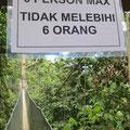 Stammt der Mensch doch vom Affen (Orang Utan) ab?