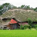 Schilf gedeckte Häuser sieht man nur noch selten.