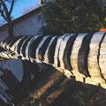 Baum-Klaviatur eines syrischen Künstlers im Garten der Cubus-Kunsthalle.