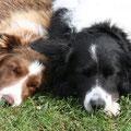 Celia und Kimi