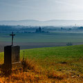 Weiden erwacht, Foto Žaneta Weidner