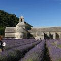 Kloster Senanque (Foto: Hans Werner Lehner)