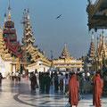 Shwedagon-Pagode Yangon, Myanmar
