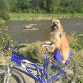 Toya, so eine Velotour ist cool / faire un tour en vélo c'est super