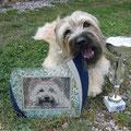 Grisou,  i'm the Gigolo la la la lalala........   und bin sooo stolz auf meinen Pokal