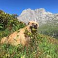 Sira geniesst die schöne Bergwelt