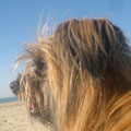 Jolie à Cinque Terre