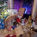 Rubis: c'est le quel mon cadeau ?    Rubis, welches Paket gehört mir?