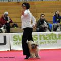 Fanouk wir gratulieren Euch zum 4. Platz in Winterthur / félicitation pour la 4ème place
