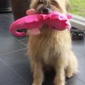 Sira avec son cadeau d'anniversaire / Sira mit ihrem Geburtstagsgeschenk