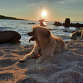 Sira passe les vacances en Corse / Sira, Sommerferien in Korsika