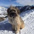 Ami Winterwanderung / Ami rando d'hivers