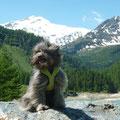Flo geniesst die schönen Berge / Flo profite des montagnes