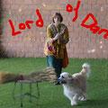 Fanouk unser Dogdancer an der SwissOpen in Murzelen