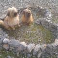 Jolie e Ramon: si amano :-)