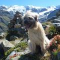 Sira im Tirol