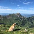 Lola sur le toit de la Suisse / Lola auf dem Dach der Schweiz