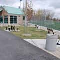 Terrain de soccer École Ozias-Leduc, Mont St-Hilaire