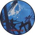 """andxesion terrartorium picture 12"""" vinyl"""